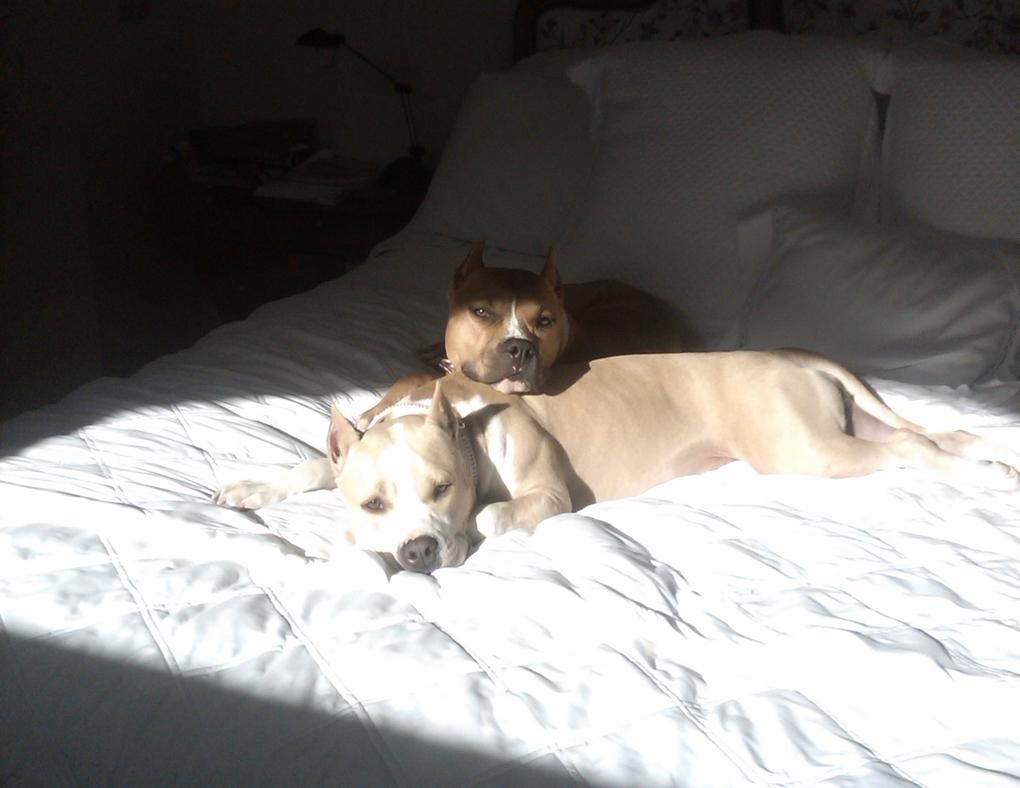 Zuzu and Clyde always inseparable